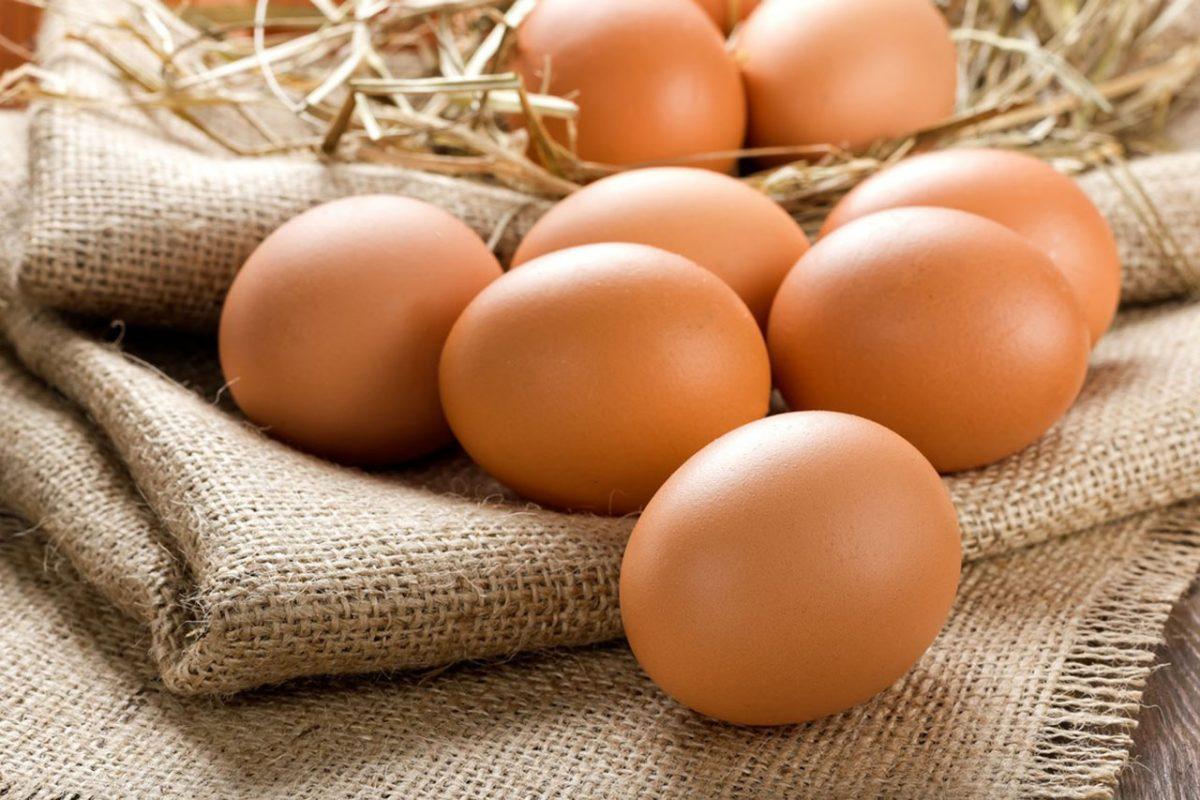 Polska jajami stoi